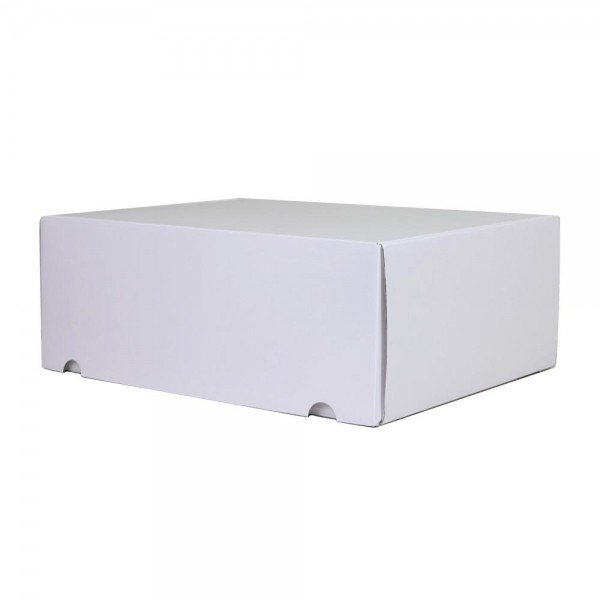 Luxe verzenddoos - Wit (glans) - 42,5x31x15,5 cm-0